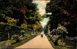 Ansichtskarte / Postkarte Riesa an der Elbe Sachsen, Partie im Stadtpark, Kinder, Weg, Rosen