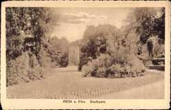 Ansichtskarte / Postkarte Riesa an der Elbe Sachsen, Partie im Stadtpark, Turm, Weg