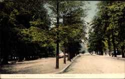 Postcard Southampton South East England, The Avenue, Promenade im Park