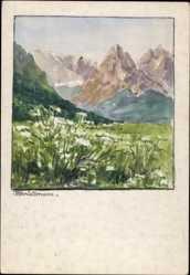 Handgemalt Ak Wollmann, Berglandschaft, Alpen, Bergblüten