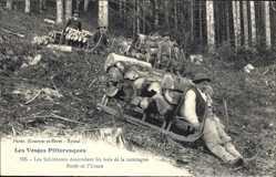 Ansichtskarten Kategorie Holztransport
