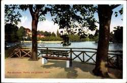 Partie am Großen Teich