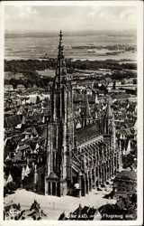 Fliegerbild vom Münster
