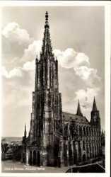 Der Münster