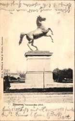 Hannoversches Pferd