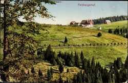 Feldberghof