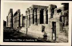 Papyrus Pillars of Amenhotep III
