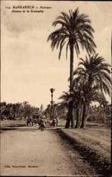Palmiers Avenue de la Koutoubia
